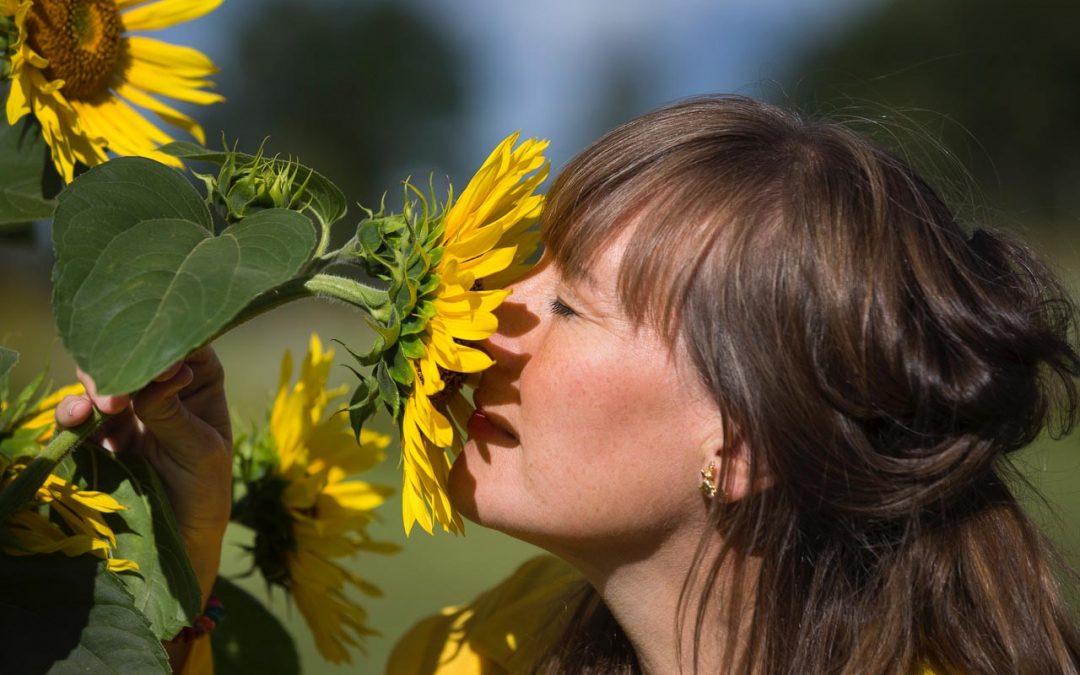 Trädgård – inspiration och odlarglädje